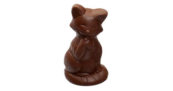 chocolate-shaped cat