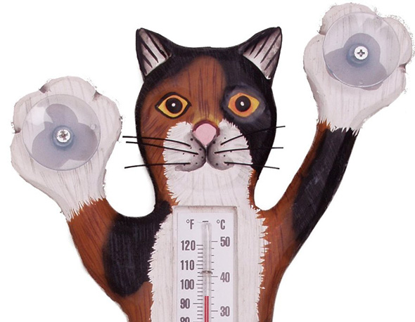 cat-thermometer
