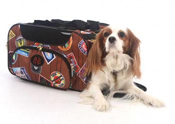 Barn N Bag Weekender Traveler Bag
